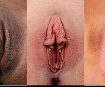 Fotos de tipos de vaginas e bucetas
